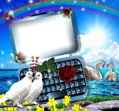 Ordinateur et colombes