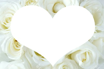 coeur rose blanche