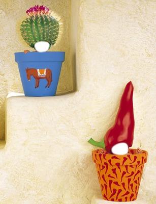 mes cactus 1