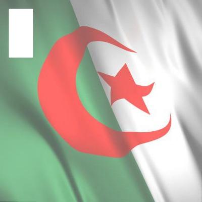 drapeau algérie 3d