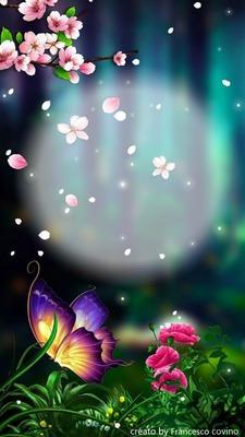 franco fiori