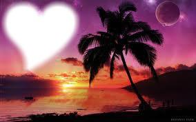 Palmier romantique