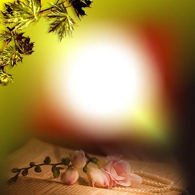 Cadre florale