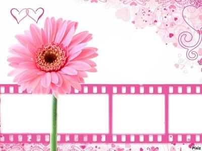 pink flower multi frame