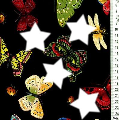 Envolée de papillons !**