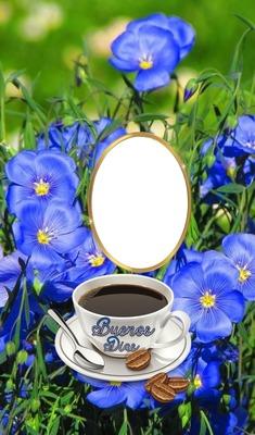 Cc Flores de buenos días