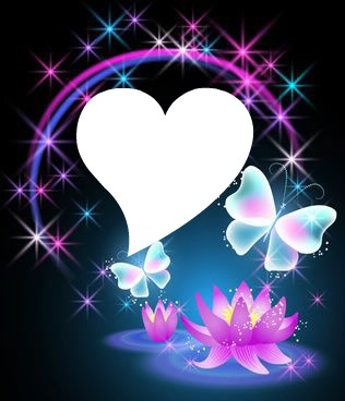 mariposas con luces