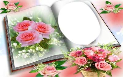 Livre aux roses