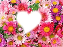 Fleur *-*