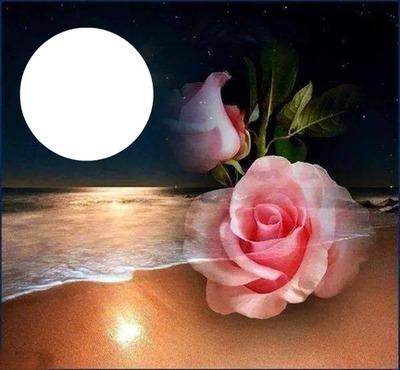 la mer au clair de lune