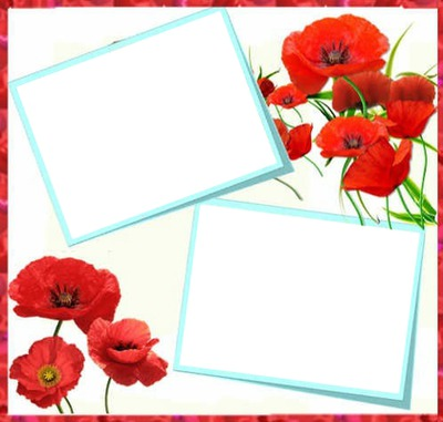 2photos coquelicot iena