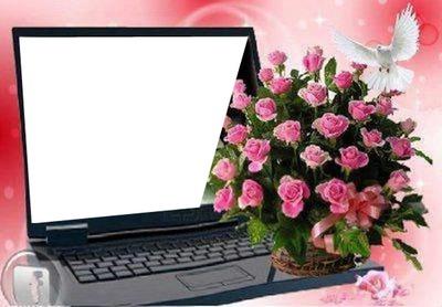 ordinateur avec bouquet de roses  1 photo