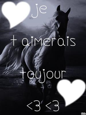 le cheval de l amour <3