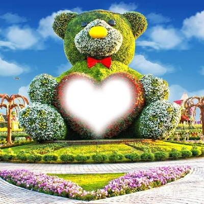 oso-flores
