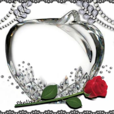 Shelina02