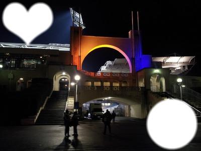 Stade Gerland bonne nuit