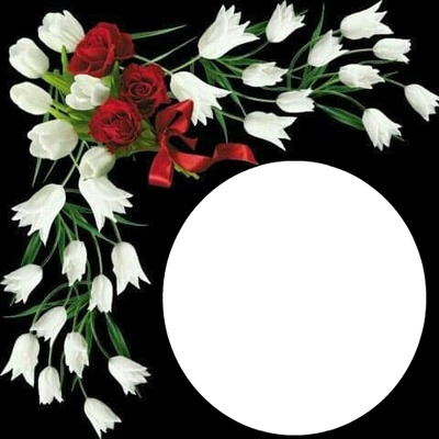 WHITE TULIPS  & RED ROSES