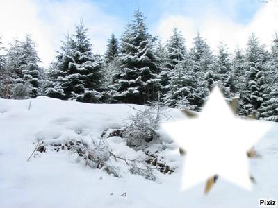 étoile de neige