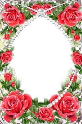 Cc entre perlas y rosas