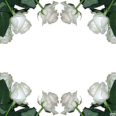 Paul White Rose ^^