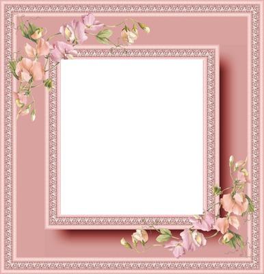 cadre rose fleurs