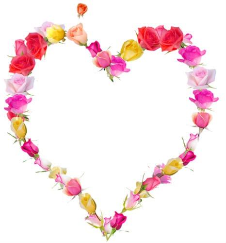Montage photo coeur pixiz - Coeur en fleurs naturelles ...