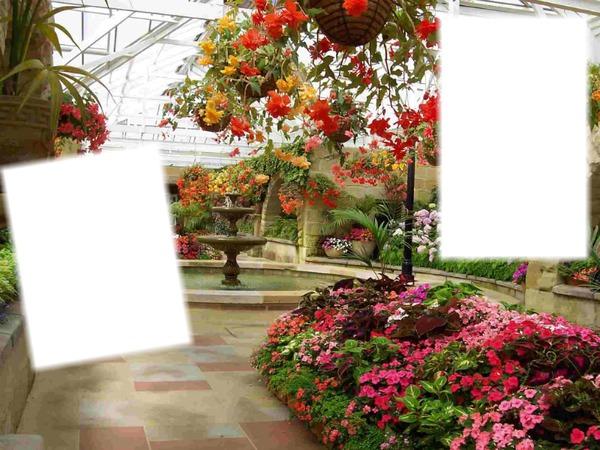 Montaje fotografico paisajes pixiz for Jardines orientales fotos