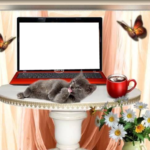 Montage photo ordinateur avec chat et tasse de caf 1 for Ordinateur pour montage photo