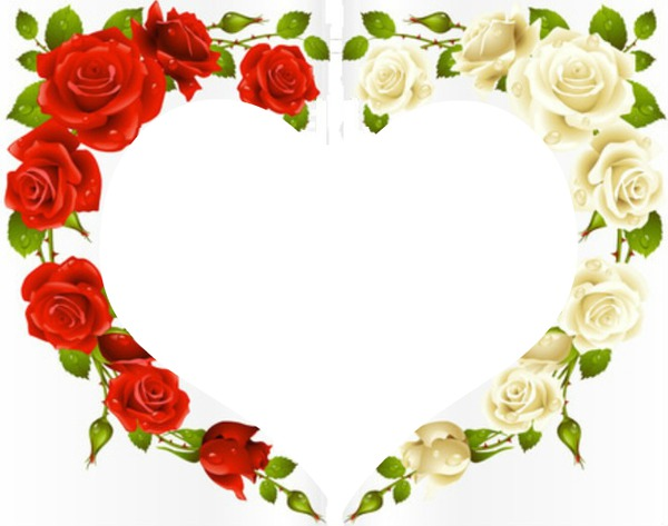 montage photo coeur fleur rose rouge blanche pixiz. Black Bedroom Furniture Sets. Home Design Ideas